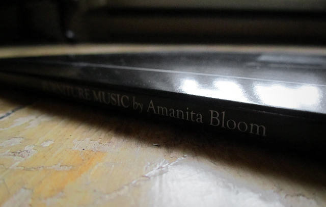 FURNITURE MUSIC by Amanita Bloom (gatefold lp)