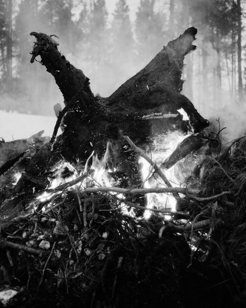 'Svart Metall' (2009) par GRANT WILLING