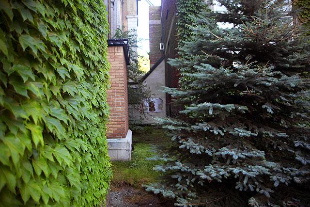 Saint-Jean-Baptiste, Fête nationale du Québec, Montréal p.Q.