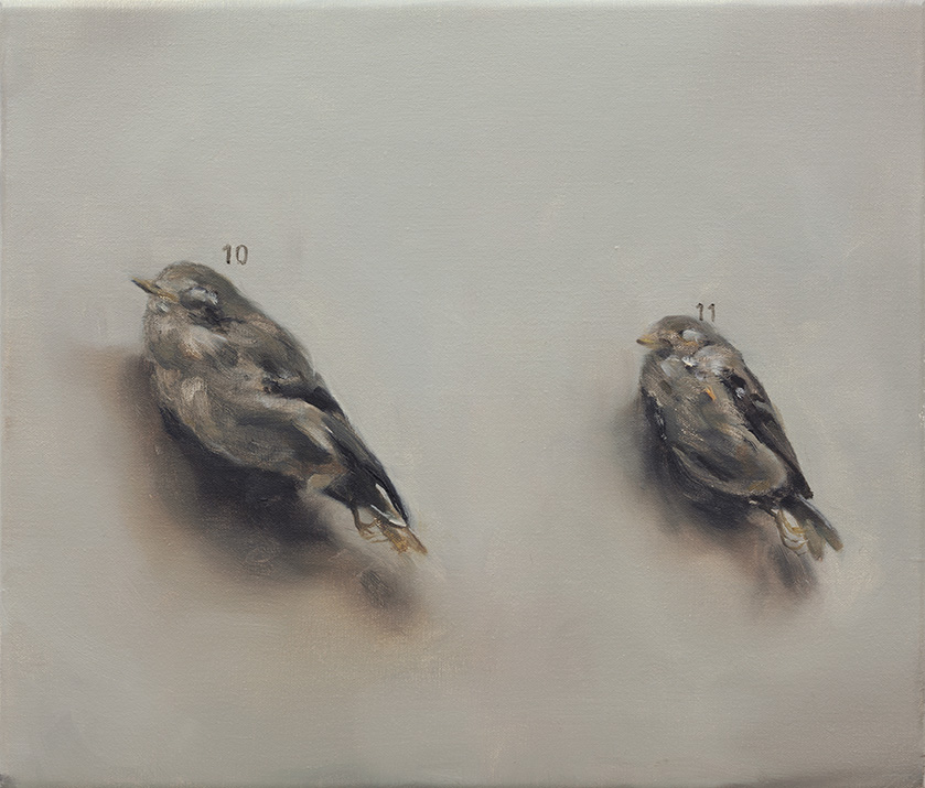 MICHAËL BORREMANS '10 & 11' (2006)