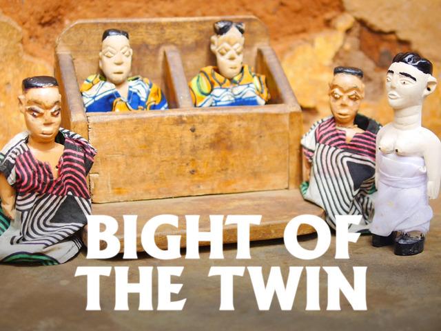 Bight of the Twin (2016) by HAZEL HILL McCARTHY III