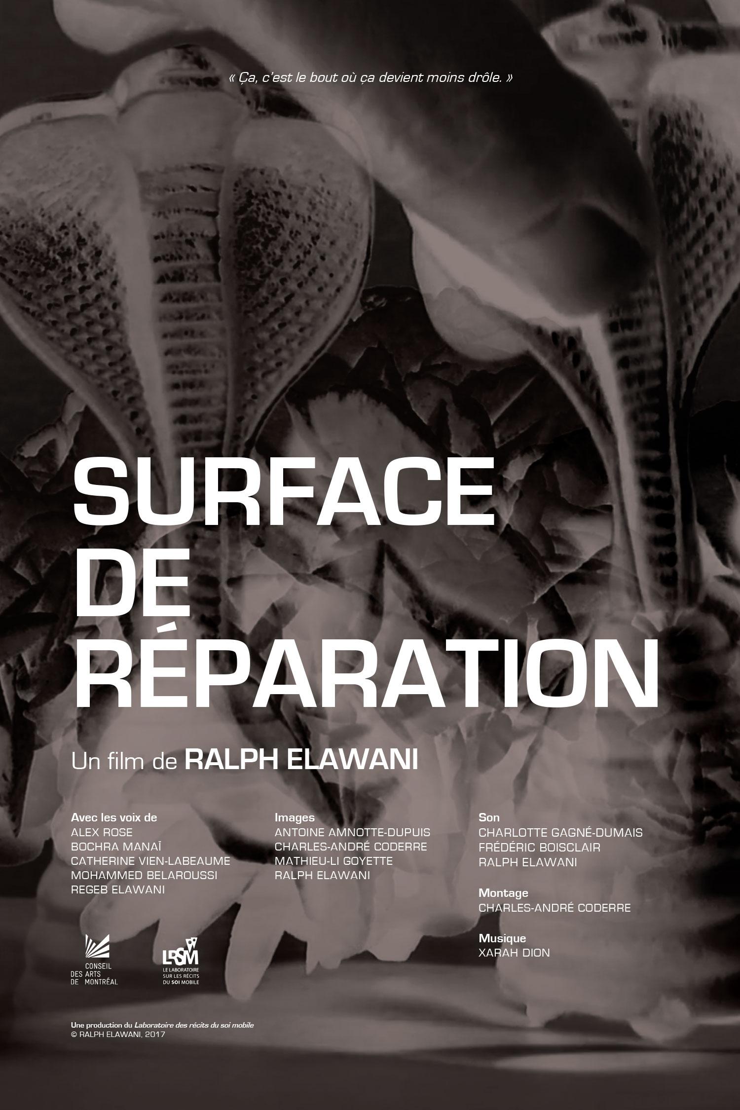 Surface de réparation (2017) de RALPH ELAWANI