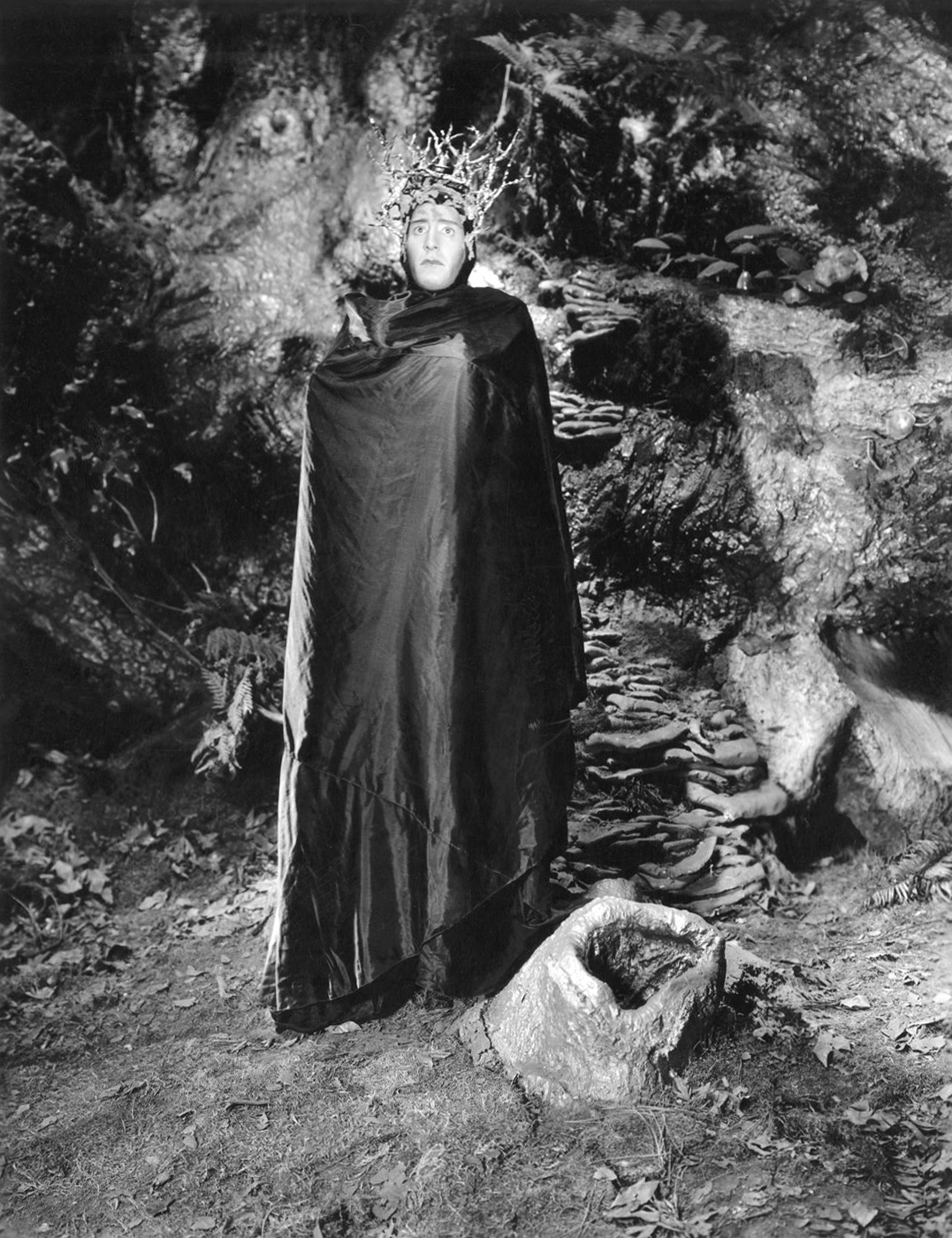 A Midsummer Night's Dream (1935) by MAX REINHARDT & WILLIAM DIETERLE